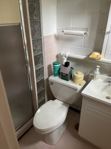 Clogged toilet fixed by Annapolis plumbers